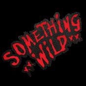 Something Wild's Photo