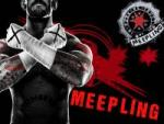 meepling's Photo