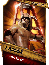 SuperCard Support Ladder S3 15 SummerSlam17