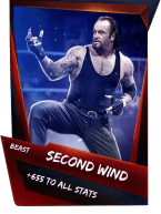 SuperCard Support SecondWind S4 16 Beast