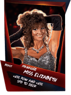 SuperCard Support MissElizabeth S4 16 Beast