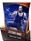 SuperCard Support SecondWind S4 20 Goliath