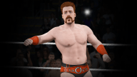 WWE2K15 Achievements18