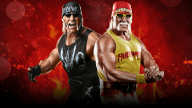 WWE2K15 Wallpaper Hogan