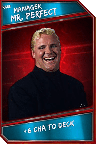 Support Card: Manager - MrPerfect - Rare