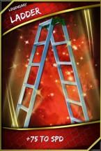 SuperCard-Support-Ladder-Epic-9397