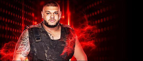 WWE 2K19 Roster Akam Authors of Pain Profile